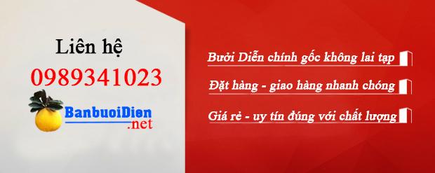ban-buoi-dien-chinh-hieu
